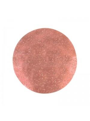 """Refina Grit 60 9"""" Tungsten Sanding Disc - 243471P1"""